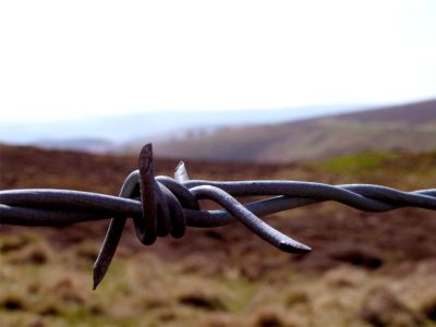 Barbed wire, Wales