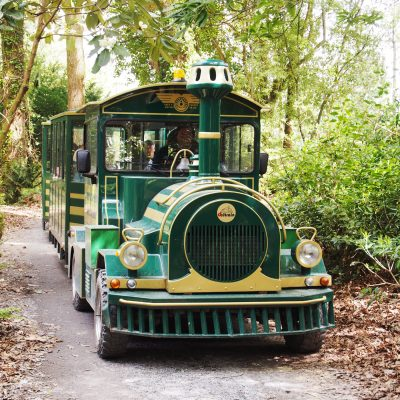 Portmeirion train